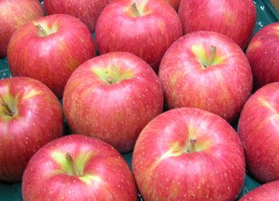 りんご03